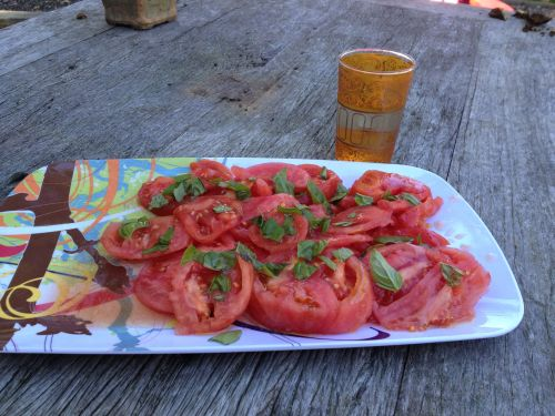 Garlic Scented Tomato Salad